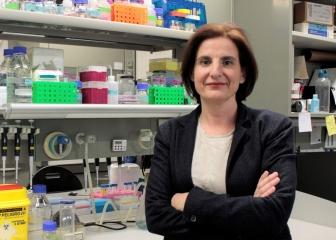 Aromics recibe 1 M€ de la Unión Europea para impulsar su fármaco contra el cáncer por amianto